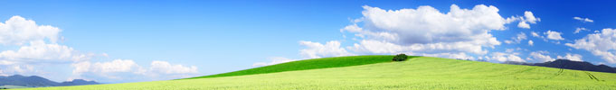 Image:  Panoramic view of arable fields